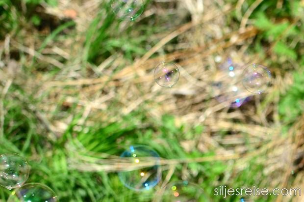 Silje bobleblogg 2