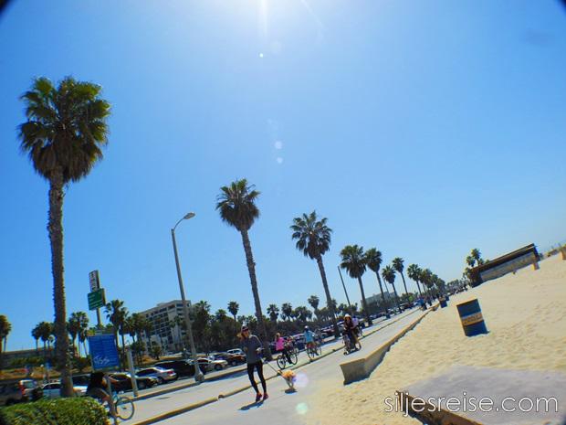 Venice beach 6