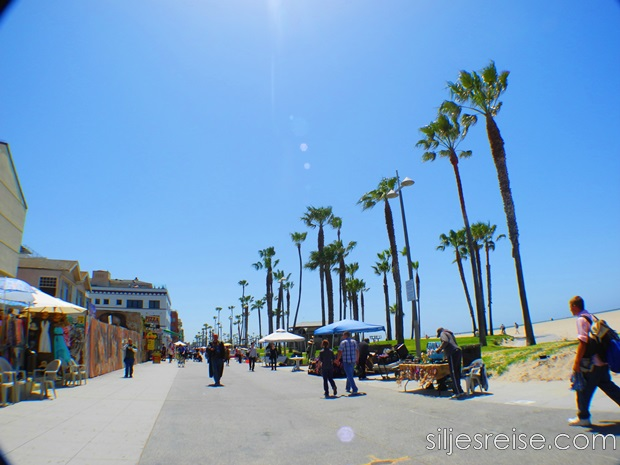 Venice beach 7