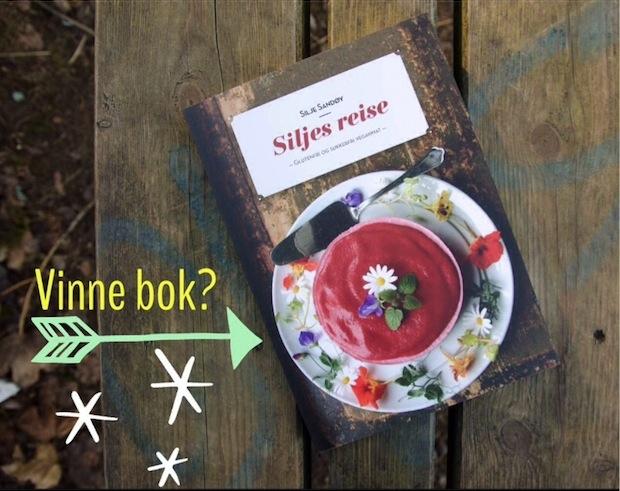 """Vinn boken """"Siljes Reise"""""""