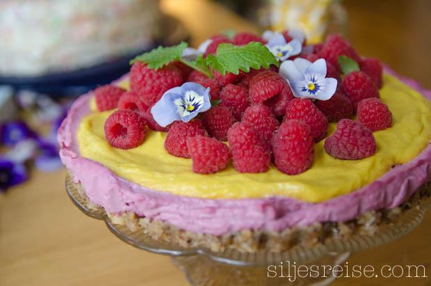 Blogg - Rå bringebær og mangokake (2 of 6)