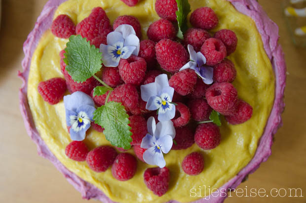 Blogg - Rå bringebær og mangokake (3 of 6)