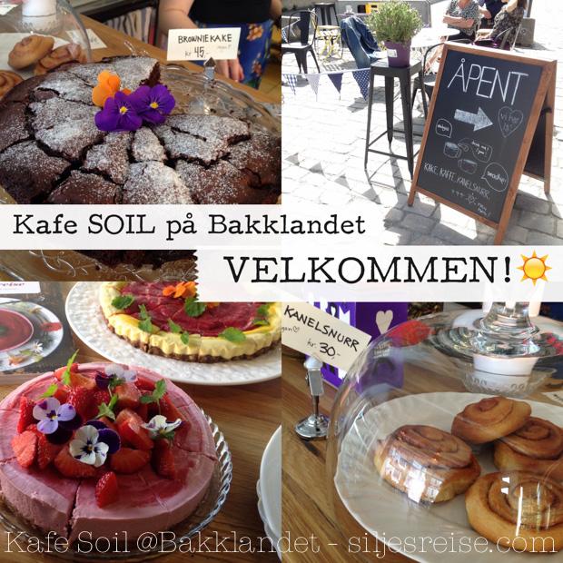 Råkake_siljesreise_Soil-24